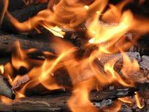 Fiamma bruciante del fuoco di accampamento Fotografia Stock Libera da Diritti