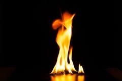 Fiamma bruciante del fuoco su fondo nero Immagine Stock