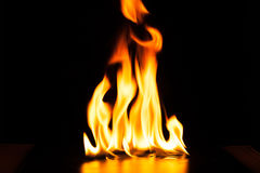 Fiamma bruciante del fuoco su fondo nero Fotografie Stock Libere da Diritti