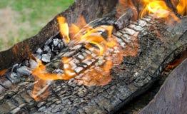 Fiamma bruciante i carboni nella griglia Fotografie Stock