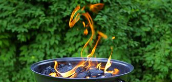 Fiamma del barbecue Immagine Stock