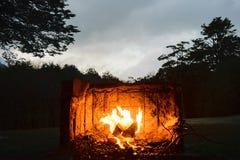 Fiamma del fuoco Fotografie Stock Libere da Diritti