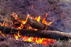 Fiamma del fuoco del campo Fotografia Stock Libera da Diritti
