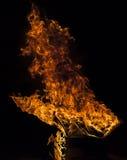 Fiamma del fuoco su fondo nero Immagine Stock