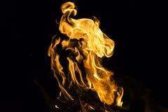 Fiamma del fuoco su fondo nero Immagini Stock