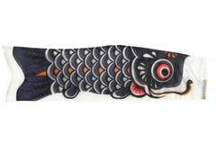 Fiamma giapponese della carpa isolata su wh Fotografia Stock