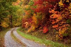 Fiammata di autunno Fotografia Stock Libera da Diritti
