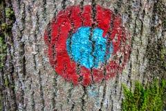 Fiammata rossa e blu sull'albero immagini stock libere da diritti