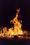 Fiamme alte da un fuoco di legno Fotografia Stock Libera da Diritti