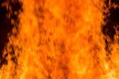 Fiamme da un grande fuoco Immagini Stock