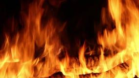 Fiamme del fuoco video d archivio