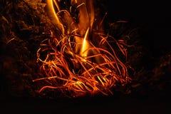 Fiamme del fuoco alla notte scura Fotografie Stock