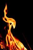 Fiamme del fuoco alla notte scura Immagini Stock