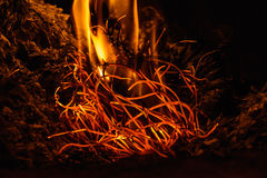 Fiamme del fuoco alla notte scura Immagini Stock Libere da Diritti