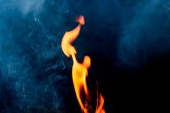 Fiamme del fuoco della natura Fotografie Stock