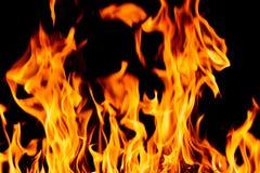 Fiamme del fuoco della natura alla notte scura Immagini Stock