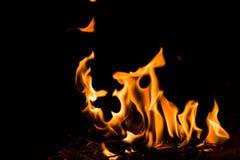 Fiamme del fuoco della natura alla notte scura Fotografie Stock