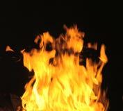 Fiamme del fuoco di accampamento fotografie stock libere da diritti
