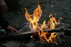 Fiamme del fuoco del falò fotografia stock