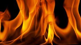 Fiamme del fuoco su priorità bassa nera Fotografia Stock