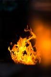 Fiamme del fuoco su una priorità bassa nera Fotografia Stock