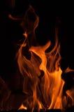 Fiamme del fuoco su una priorità bassa nera Fondo di struttura della fiamma del fuoco della fiammata Chiuda su delle fiamme del f Fotografie Stock Libere da Diritti