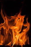 Fiamme del fuoco su una priorità bassa nera Fondo di struttura della fiamma del fuoco della fiammata Chiuda su delle fiamme del f Immagine Stock