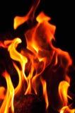 Fiamme del fuoco su una priorità bassa nera Parte posteriore di struttura della fiamma del fuoco della fiammata Immagine Stock Libera da Diritti