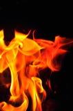 Fiamme del fuoco su una priorità bassa nera Parte posteriore di struttura della fiamma del fuoco della fiammata Immagine Stock