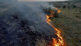 Fiamme e fumo di incendio violento in natura video d archivio