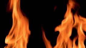 fiamme 4K della costruzione e poi di estinguersi del fuoco archivi video