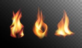 Fiamme realistiche del fuoco su un fondo trasparente Fotografie Stock