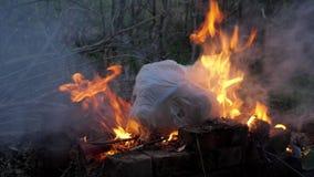 Fiammeggi lo spreco bruciante dell'immondizia del fumo e del fuoco di plastica ad inquinamento atmosferico stock footage