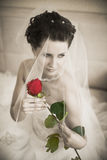Fiancee. Vertical wedding portrait beautifull  fiancee in white dress, with flower Royalty Free Stock Images