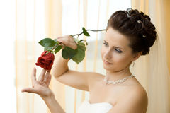 Fiancee. Vertical wedding portrait beautifull  fiancee in white dress, soft light Royalty Free Stock Photos