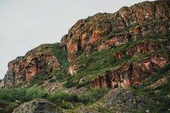 Fianco della collina in montagne di Altai Immagine Stock