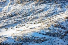 Fianco di una montagna innevato al tramonto Potete vedere una costruzione abbandonata e due cervi di pascolo immagine stock libera da diritti