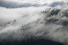 Fianco di una montagna nebbioso della California Fotografie Stock Libere da Diritti