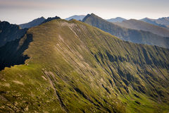 Fianco di una montagna in Romania, Fagaras, Carpathians immagini stock
