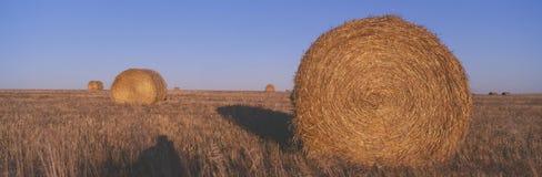 Fianzas del heno, Imagen de archivo