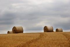 Fianzas del heno en el campo (1) Fotografía de archivo