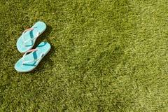 Fiascos dans l'herbe Photo libre de droits