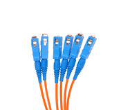 Fiber cable for network. close-up Stock Image