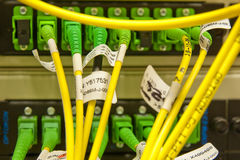Fiber cables connected to servers Royalty Free Stock Image
