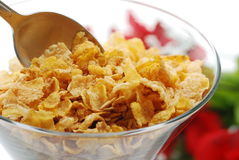 Fiber cereal. Healthy fiber cereal with spoon and rose royalty free stock photography