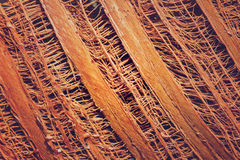 Fiber on coconut tree pattern Royalty Free Stock Image