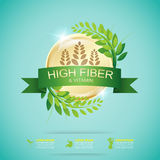 Fiber in Foods Slim Shape and Vitamin Concept Label Vector Royalty Free Stock Photos
