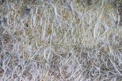 Fiber glass or fiberglass filaments foil, abstract texture Stock Image