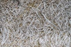 Fiber glass or fiberglass filaments foil, abstract texture Royalty Free Stock Photography