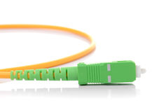 Fiber optic cable on white background Royalty Free Stock Images